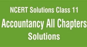 NCERT Solutions for Class 11 Accountancy