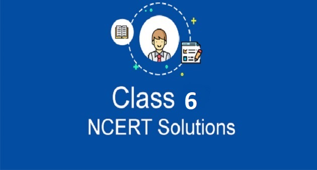ncert solution for class 6