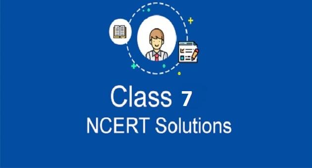 ncert solution for class 7