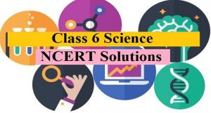 ncert solutions for class 6 science